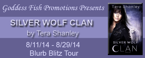 BBT Silver Wolf Clan Tour Banner copy